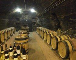 Tramier cellars 01